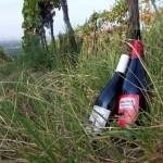 Histamnfreier Wein vom Winzerhof Allacher