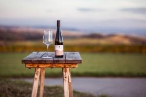 Weine des Weinguts am Berg